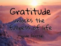 Gratitude – It's not something to think about