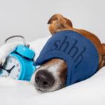 Sleep aid calm mind The Positive Edge