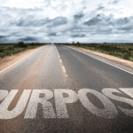 Reflection on Purpose and Meaning - The Positive Edge