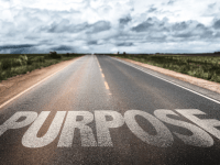 A Reflection on Purpose & Meaning