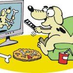 dog watching tv - feeding your mind