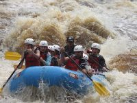 Different Boats? Let's Weather the Storm by Paddling Together